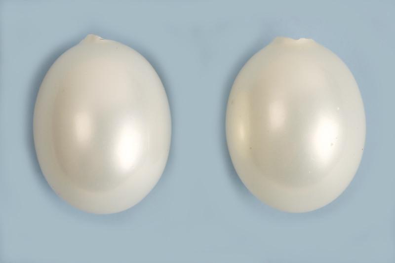 Shell Pearl, æggeformet, anboret, ca. 10x13 mm, hvid, 2 stk.
